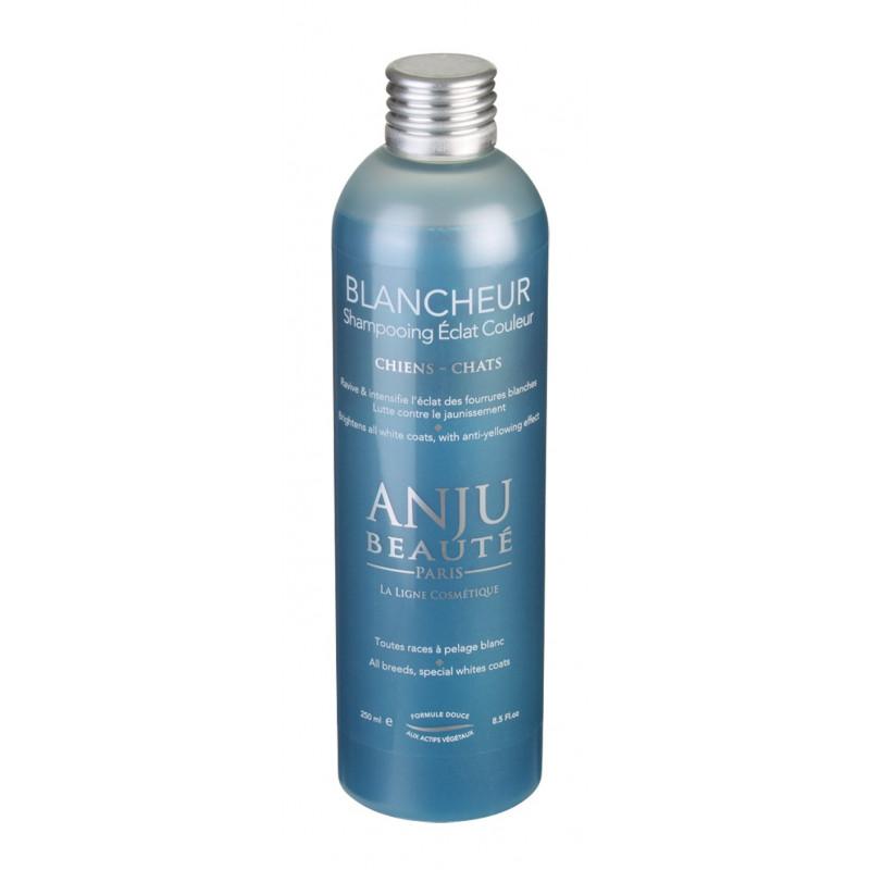 Shampooing Eclat Blancheur Anju Beauté