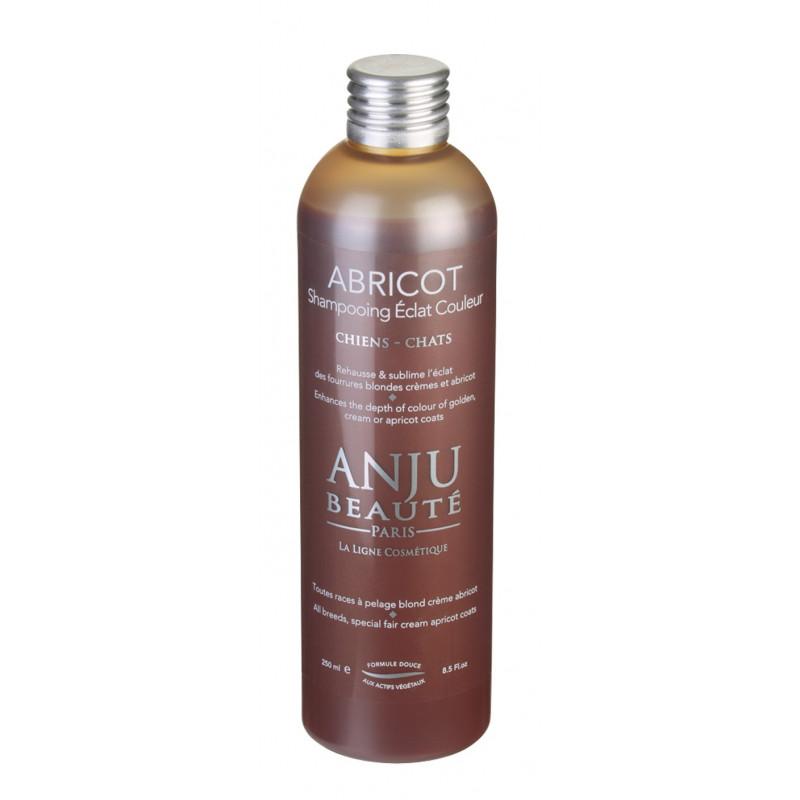 Shampooing Abricot Anju Beauté