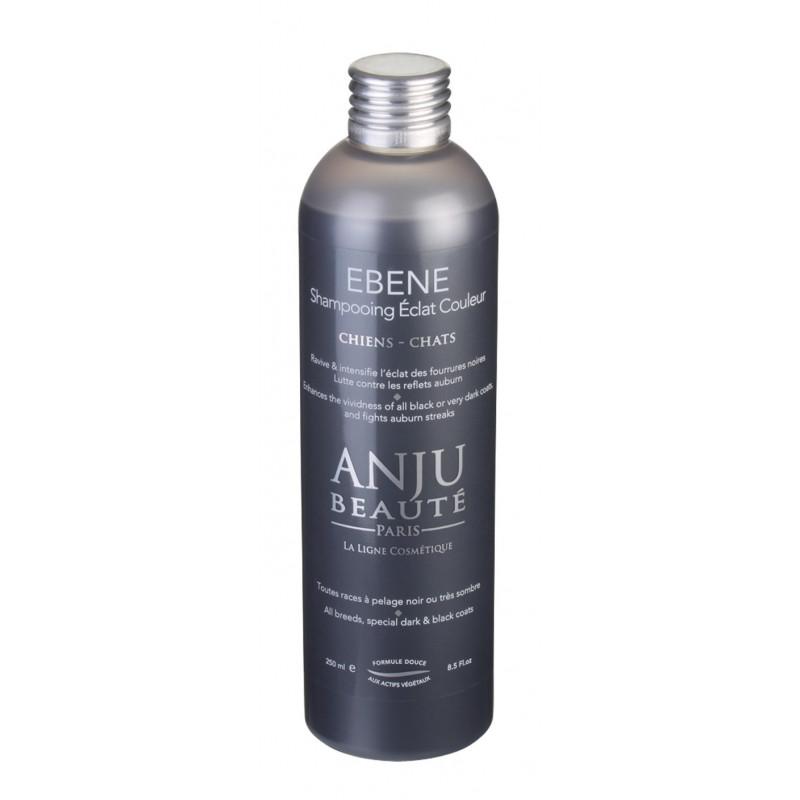 Shampooing Ebène Anju Beauté