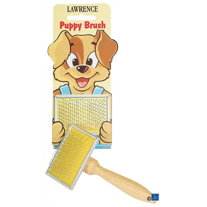Carde Mini pour chiot Lawrence
