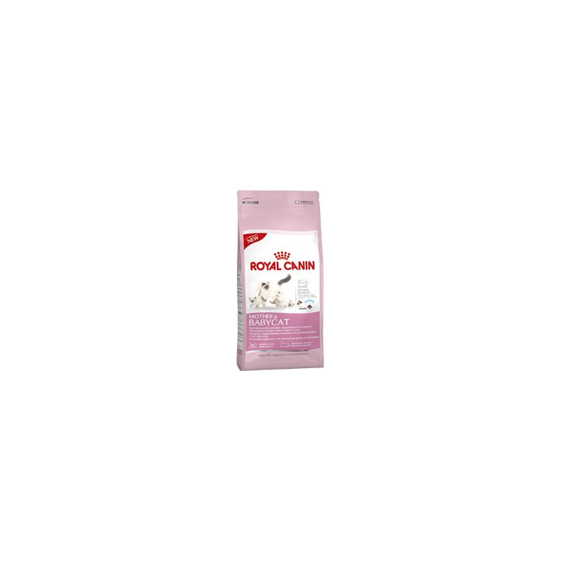 Croquettes Royal Canin BABYCAT  MOTHER & BABYCAT