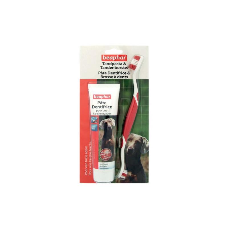 Brosse dents et dentifrice pour chien pet beauty store - Brosse a chien ...