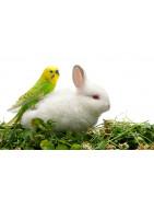 Alimentation Oiseaux et Rongeurs
