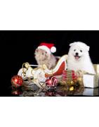 Cadeaux de Noel pour animaux