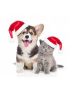 Cadeaux de Noel de luxe pour animaux