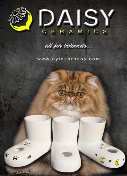 Daisy Ceramics